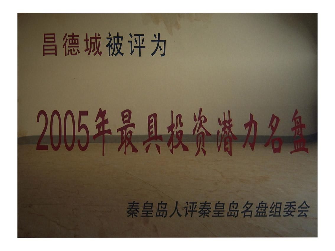 2005年雷电竞竞猜城最具投资潜力名盘