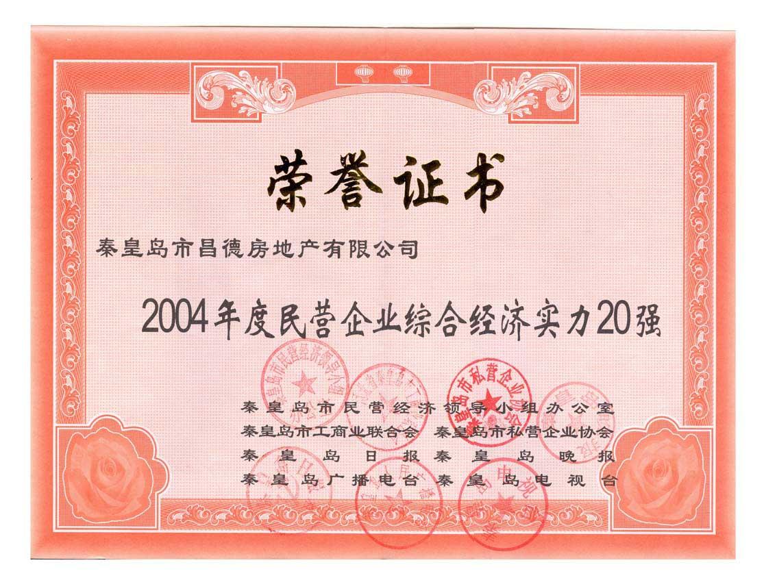 2004年民营企业综合经济实力20强